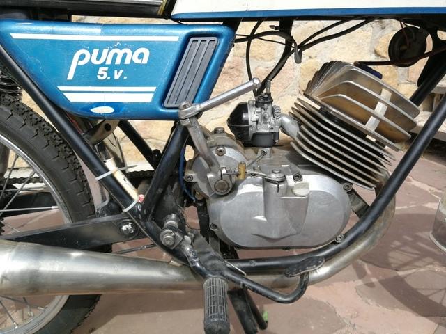 pulgar helado dorado  MIL ANUNCIOS.COM - Lambretta Serveta Puma 5v documentada