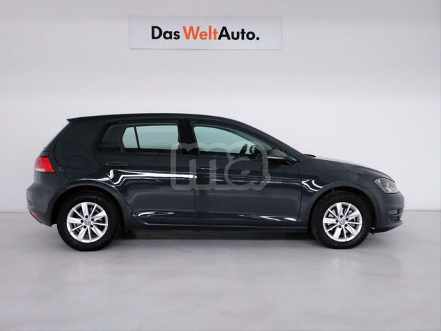 VOLKSWAGEN - GOLF BUSINESS 1. 6 TDI 110CV BLUEMOTION - foto 2