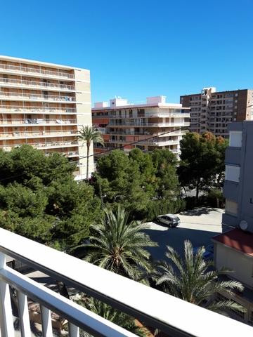 Mil Anuncios Com Playa San Juan Avenida Cataluña En Alicante Alacant