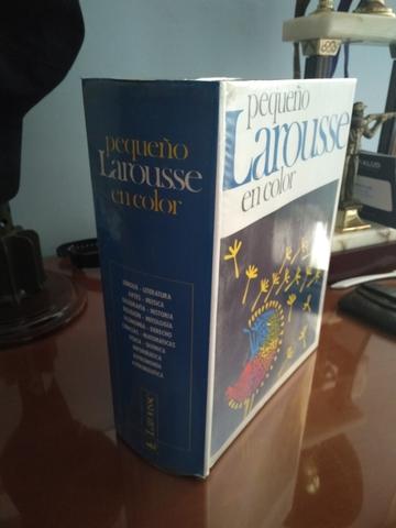 DICCIONARIO LAROUSSE EN COLOR - foto 6