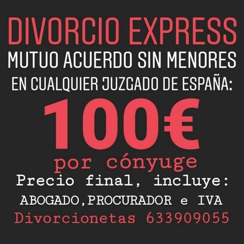 DIVORCIO SIN HIJOS 100  TODO INCLUIDO - foto 1