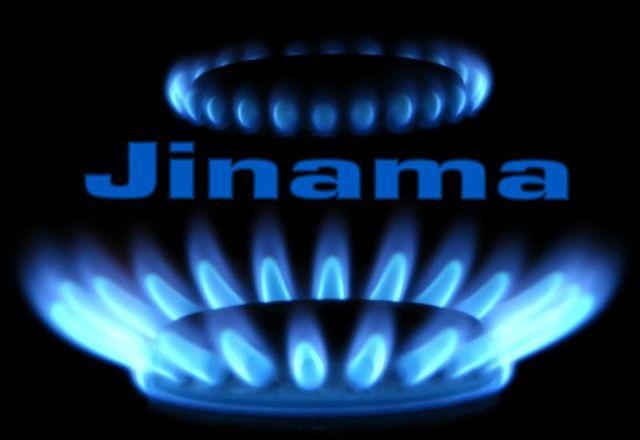 PLANCHAS A GAS PARA JARDÍN - foto 5
