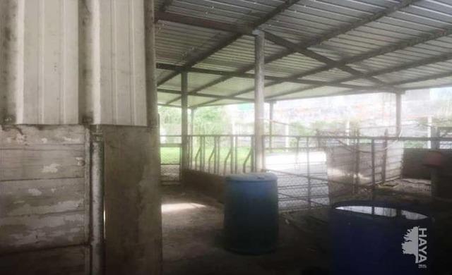 INSTALACION GANADERA EN SUELO RUSTICO - foto 6