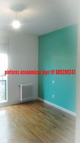 PINTORES EN ILLESCAS DTOS 689289243 - foto 8