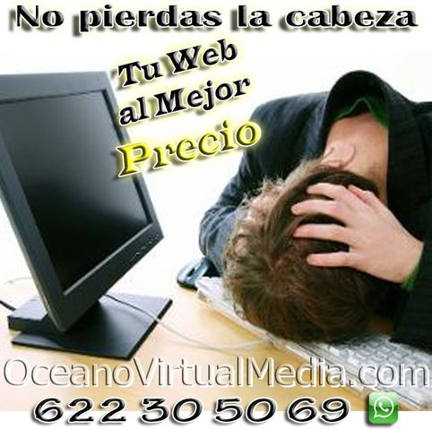 SITIO WEB AL MEJOR PRECIO DEL MERCADO - foto 1