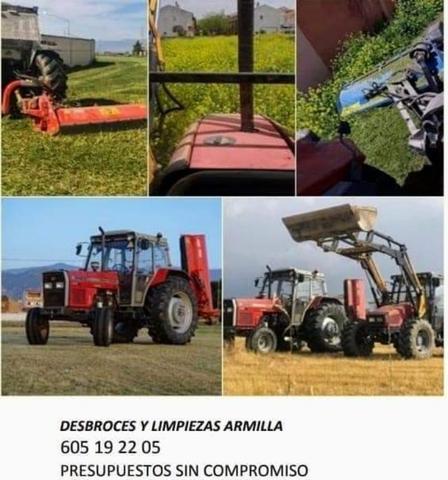 DESBROCES Y LIMPIEZAS ARMILLA PLATAPLATA - foto 2