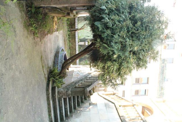 CASCO URBANO - foto 4