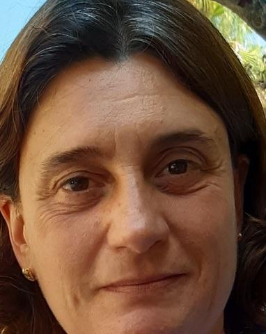 PLANCHA A DOMICILIO - foto 1