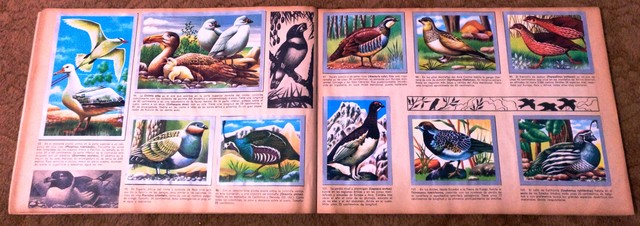 ALBUM ANIMALES Y MINERALES COMPLETO - foto 4