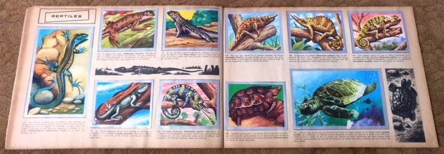 ALBUM ANIMALES Y MINERALES COMPLETO - foto 6