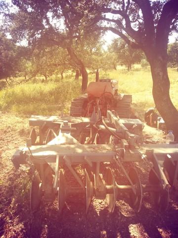 FÍAT 505 - TRACTOR CON GRADAS - foto 3