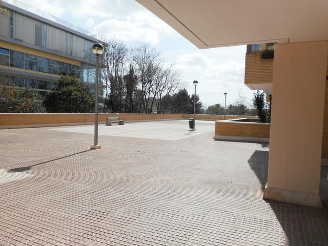 ESTE - ALCOSA- TORREBLANCA - foto 3