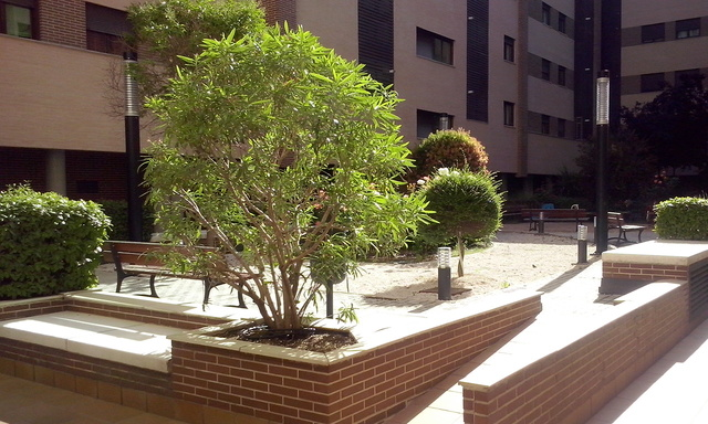 ALQUILADO, TRASTERO CALLE MAGALLANES Nº 2 - foto 5
