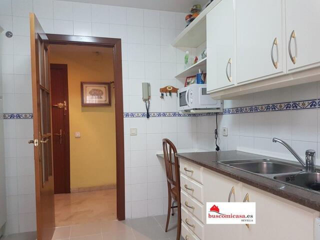 SAN PABLO - SANTA JUSTA - CALLE PINTA 37 - foto 7