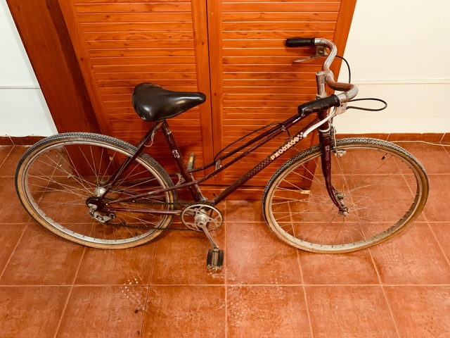 Bici Peugeot Carbolite 103