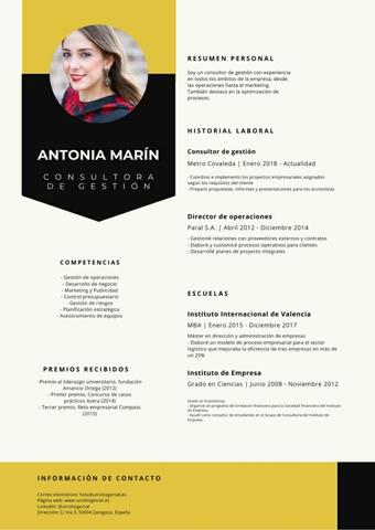 CV PROFESIONAL - foto 2