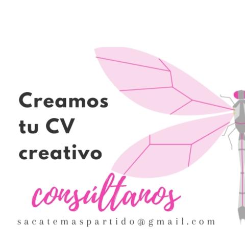 CV PROFESIONAL - foto 7