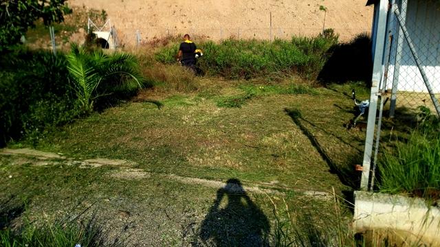 DESBROCE Y LIMPIEZA DE PARCELAS - foto 4