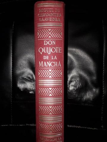 DON QUIJOTE DE LA MANCHA - foto 2