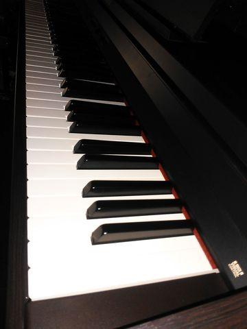 PIANO ROLAND RP301 EN PERFECTO ESTADO - foto 6