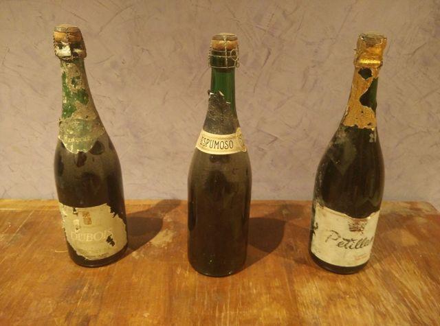 Lote 3 Botellas Vino Espumoso Vintage