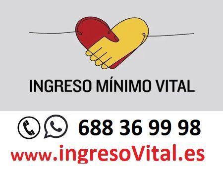 INGRESO MÍNIMO VITAL - foto 1