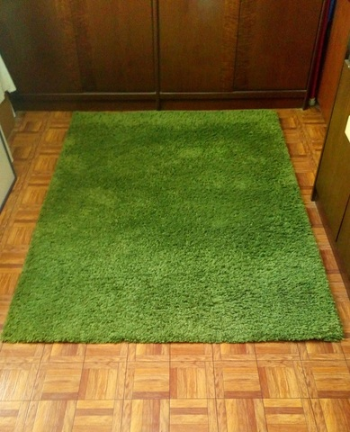 Ikea Hampen Alfombra, Pelo Largo, de Color Verde Brillante