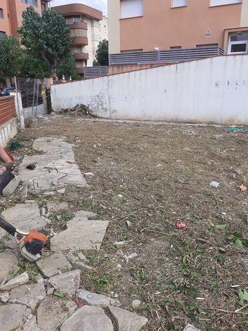 LIMPIEZA DE TERRENOS,  JARDINES Y FORESTA - foto 1