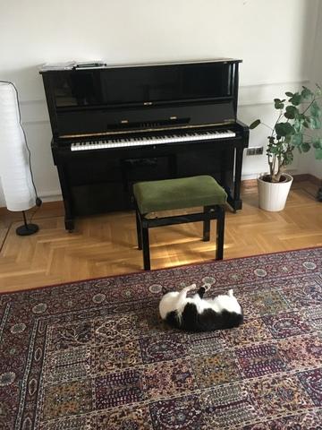PIANO YAMAHA U1H - foto 1