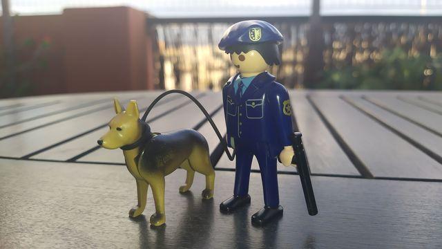 MIL ANUNCIOS.COM Abrigos para perros Segunda mano y