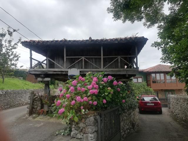 LAS CALDAS - PIÑERA - foto 5