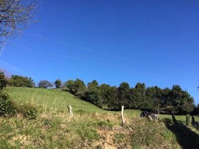 FINCA EDIFICABLE EN LA PARROQUIA DE CENE - foto 4