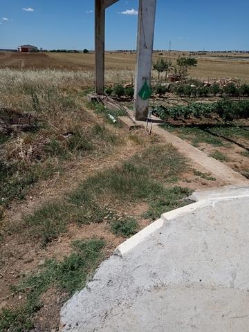 YUNQUERA D HENARES - foto 5