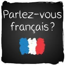 PROFESORA DE FRANCÉS - foto 1