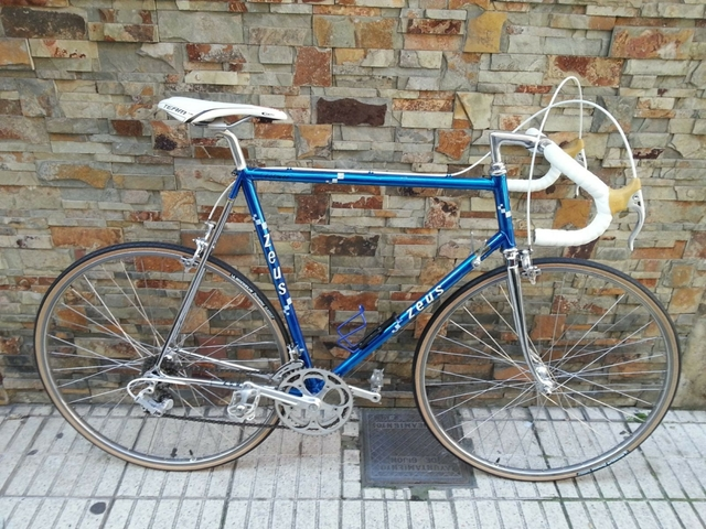 Bicicleta Ciclista Zeus Cosmos