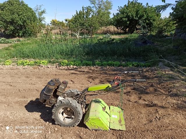 MOTOCULTOR DIESEL - foto 1