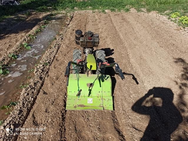 MOTOCULTOR DIESEL - foto 2