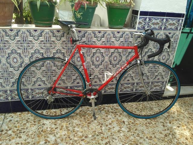 Bicicleta Zeus Grand Prix