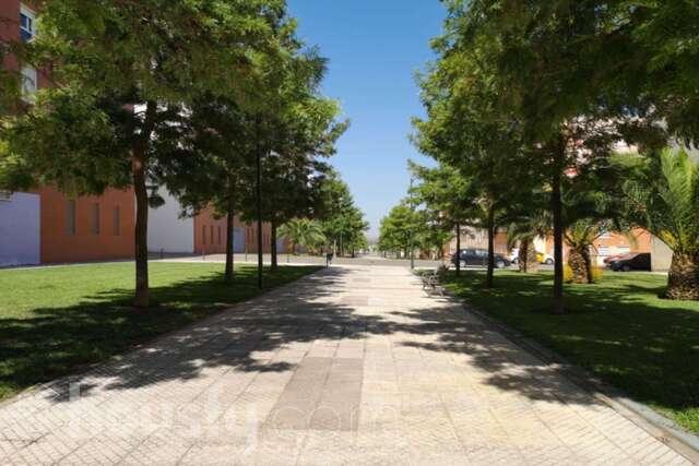 CTRA.  SEVILLA - LOS MONTITOS - foto 1