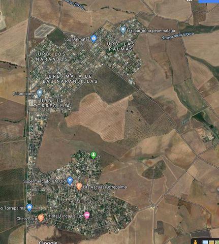 REF. 12574 URB.  LAS PALMAS (RESERVADO) - foto 2