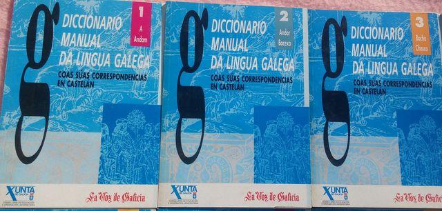 DICCIONARIO MANUAL DA LINGUA GALEGA - foto 2