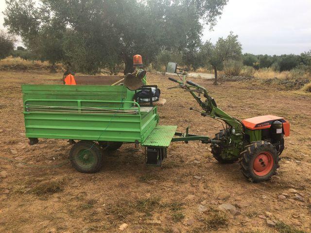 MOTOCULTOR AGRIA 7713 - foto 3