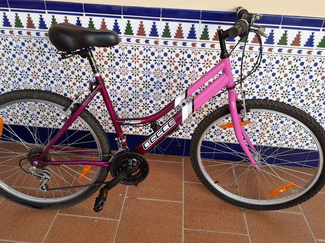 Vendo Bicicleta Seminueva