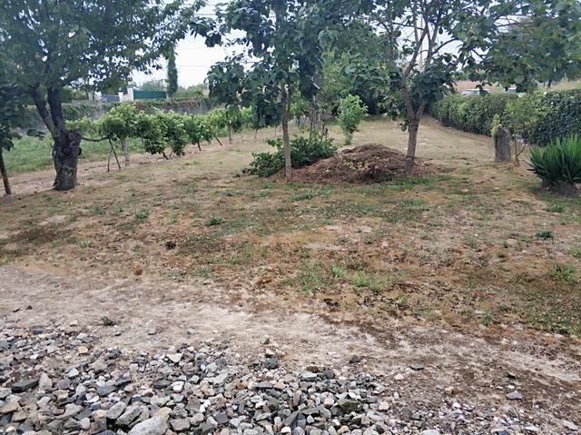 GANDARIO - GANDARIO - foto 3