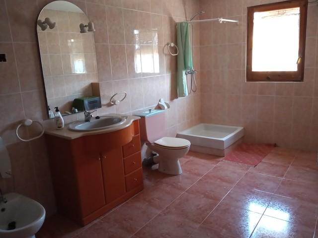 FINCA CON AGUA DE RIEGO Y CONSTRUCCIÓN - foto 5