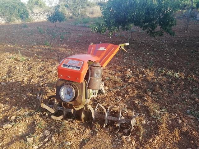 MOTOCULTOR AGRIA 7000 - foto 2