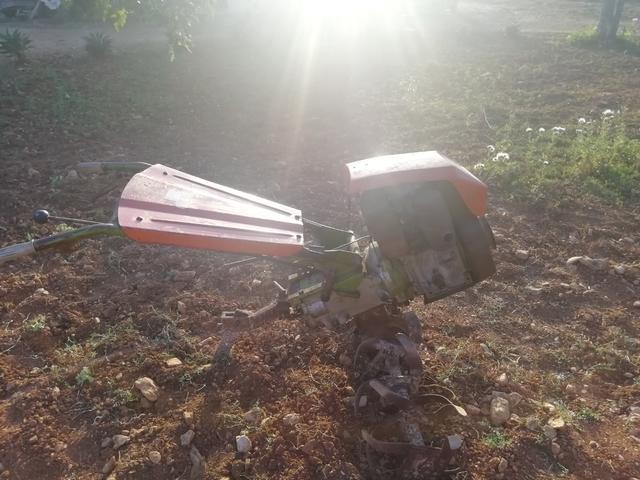 MOTOCULTOR AGRIA 7000 - foto 3