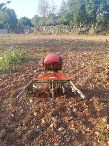 MOTOCULTOR AGRIA 7000 - foto 5