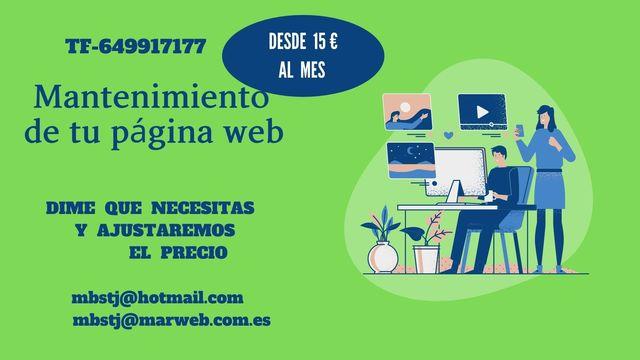 MANTENIMIENTO DE PÁGINAS WEB - foto 1