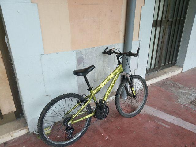 Bicicleta Montaña Orbea Mx 24